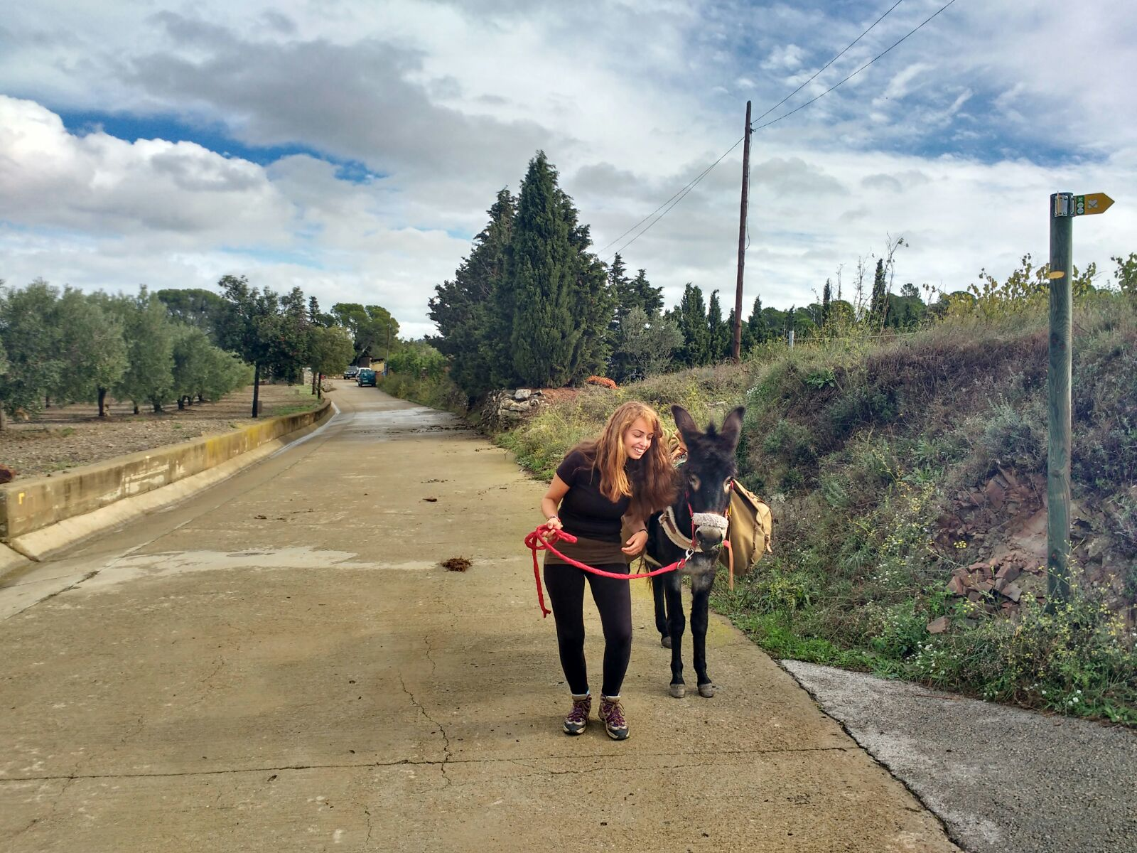 Donkey trekking near Barcelona