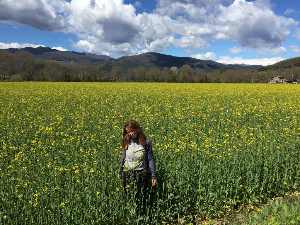 Campo fiori Olot - Sant Feliu de Pallarolls