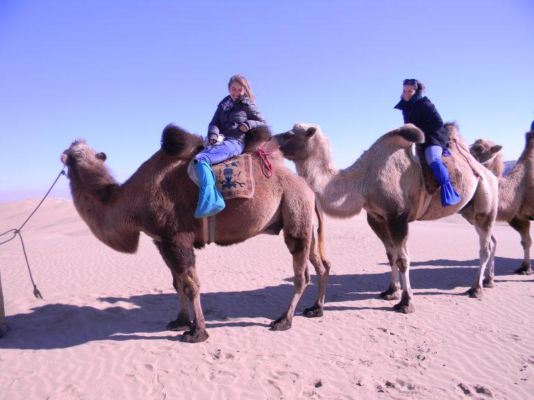 Camel ride Mongolia