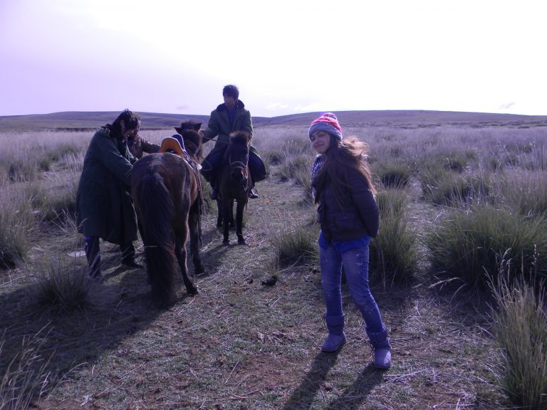 Mongolia grassland trip